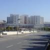 Meia centena de novos médicos a caminho de Viseu