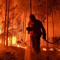 Desinvestimento nos Bombeiros Municipais de Viseu prejudicou o combate aos fogos florestais