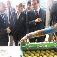 XVII feira da maçã Bravo de Esmolfe deu salto qualitativo