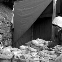 Mercado Magriço mostra concelho de Penedono