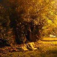 Segurança Social de Viseu deixa imigrantes a dormir na rua