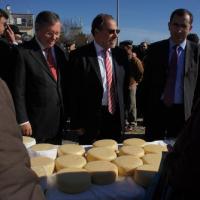 Penalva do Castelo abre ciclo de feiras do queijo Serra da Estrela
