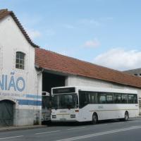 Habitantes de Paradinha vão ao mercado… Mas demoram muito mais tempo de autocarro