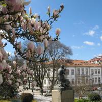 «Primavera em Viseu» recheada de sabores e emoções