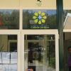 Unidade de Saúde Familiar «Cidade Jardim» dá médico de família a quase todos os utentes