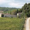 Grupo Amorim investe no Dão e compra Quinta da Taboadella