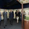 «A Floresta»: Viseu acolhe primeira exposição da Fundação La Caixa