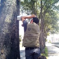 Superior Agrária lança base de dados do património arbóreo de Viseu