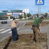 Município de Viseu remove relva para poupar água