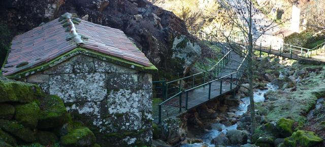 Tondela reabilita percursos pedestres e cria a grande rota do Caramulo