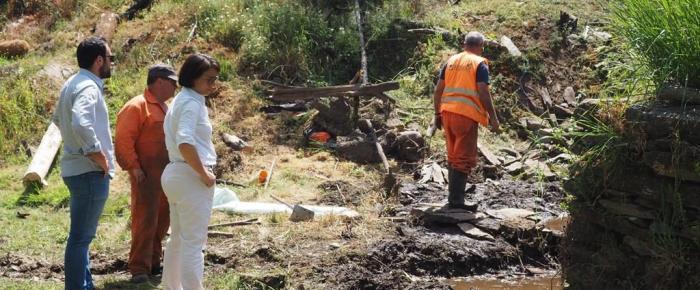 Tondela investe 180 mil euros em ecossistemas de rios afectados pelos incêndios
