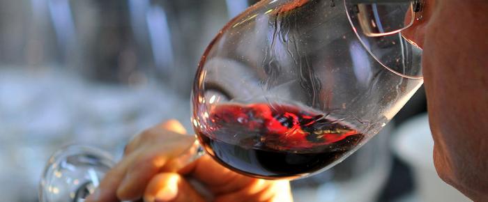 Wine Advocate coloca vinhos do Dão no top mundial