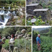 Politécnico de Viseu promove participação política e cívica de mulheres agricultoras
