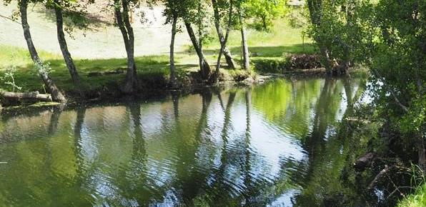Zonas de lazer do concelho de Tondela com água própria para banhos