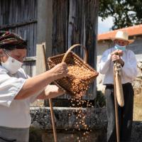 «Rota do Milho» na Rota do Turismo Cultural em Várzea de Calde