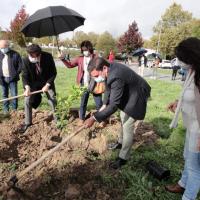 40 anos, 40 árvores no campus do Politécnico de Viseu