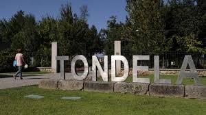 Município de Tondela reforça apoios ao comércio e serviços