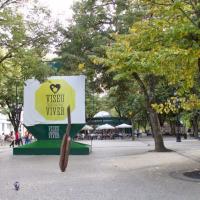 «Viseu Entrega» já investiu 100 mil euros em 12 mil refeições