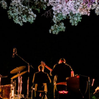 Festival «Que Jazz é Este?» regressa de 21 a 25 de julho