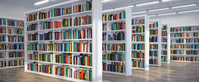 Luz verde para a Rede Intermunicipal das Bibliotecas Viseu Dão Lafões